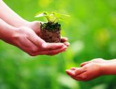 Sống trên đời, con người nên biết tích đức để được hưởng phúc